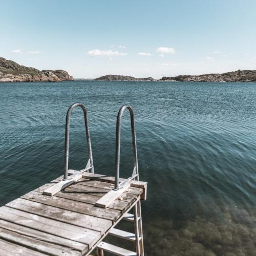 Best Dock Ladders Reviews